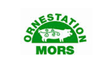 Ornestation Mors